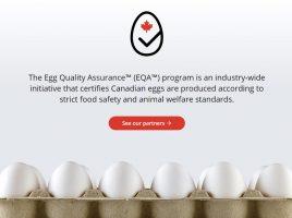 screencapture-eggquality-ca-2021-06-01-11_13_45